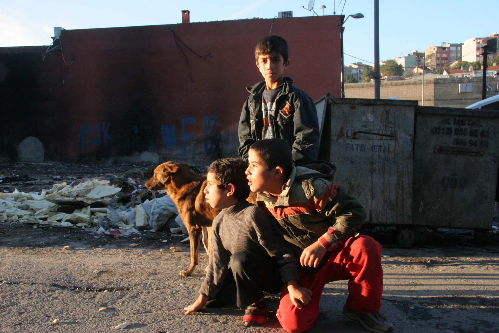 Boys are playing with a street dog in Tarlabaşı