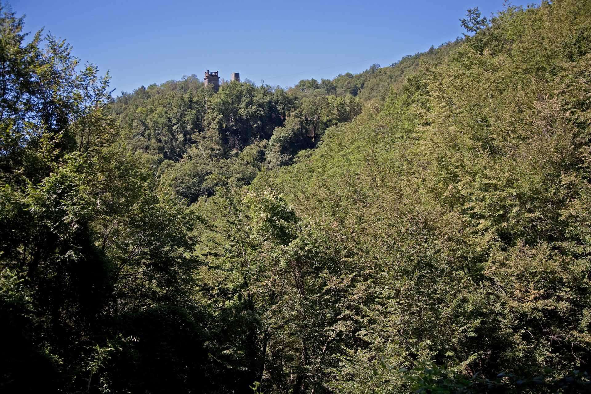 """""""Früher waren die Alpi Apuane, die Berge rund um Sant'Anna bewirtschaftet. Hoch oben ragen die Dorfkirche und das Mahnmal aus dem grünen Meer."""""""