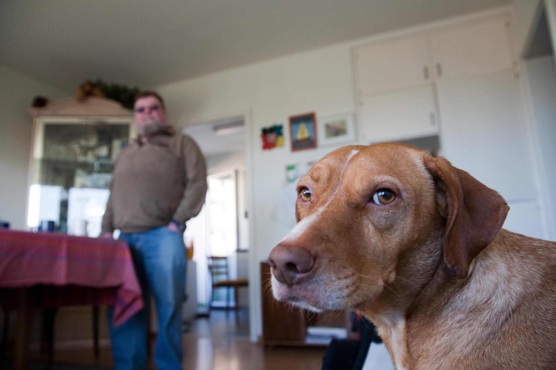 """""""Eines Tages lief ihm ein Hund zu, er wog nur zehn Kilo, sein kupferfarbenes Fell war dreckig und verlaust. Peter Weber stellte ihm Futter hin, ließ ihn impfen und nannte ihn Rambo, weil er ständig aufs Bett sprang und die Kissen durch die ganze Wohnung trug."""""""