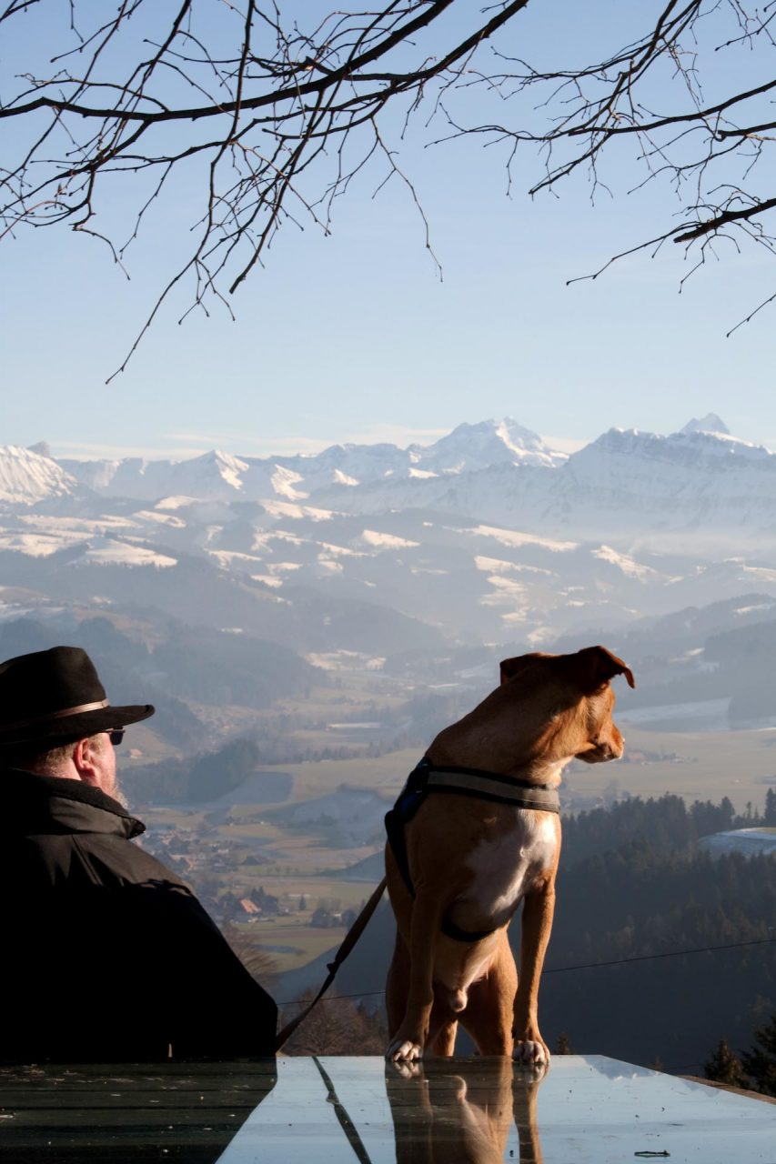 """""""Blick zurück: Peter Weber schaut in das Tal, in dem er als Verdingkind misshandelt wurde. Sein Hund Rambo begleitet ihn."""""""