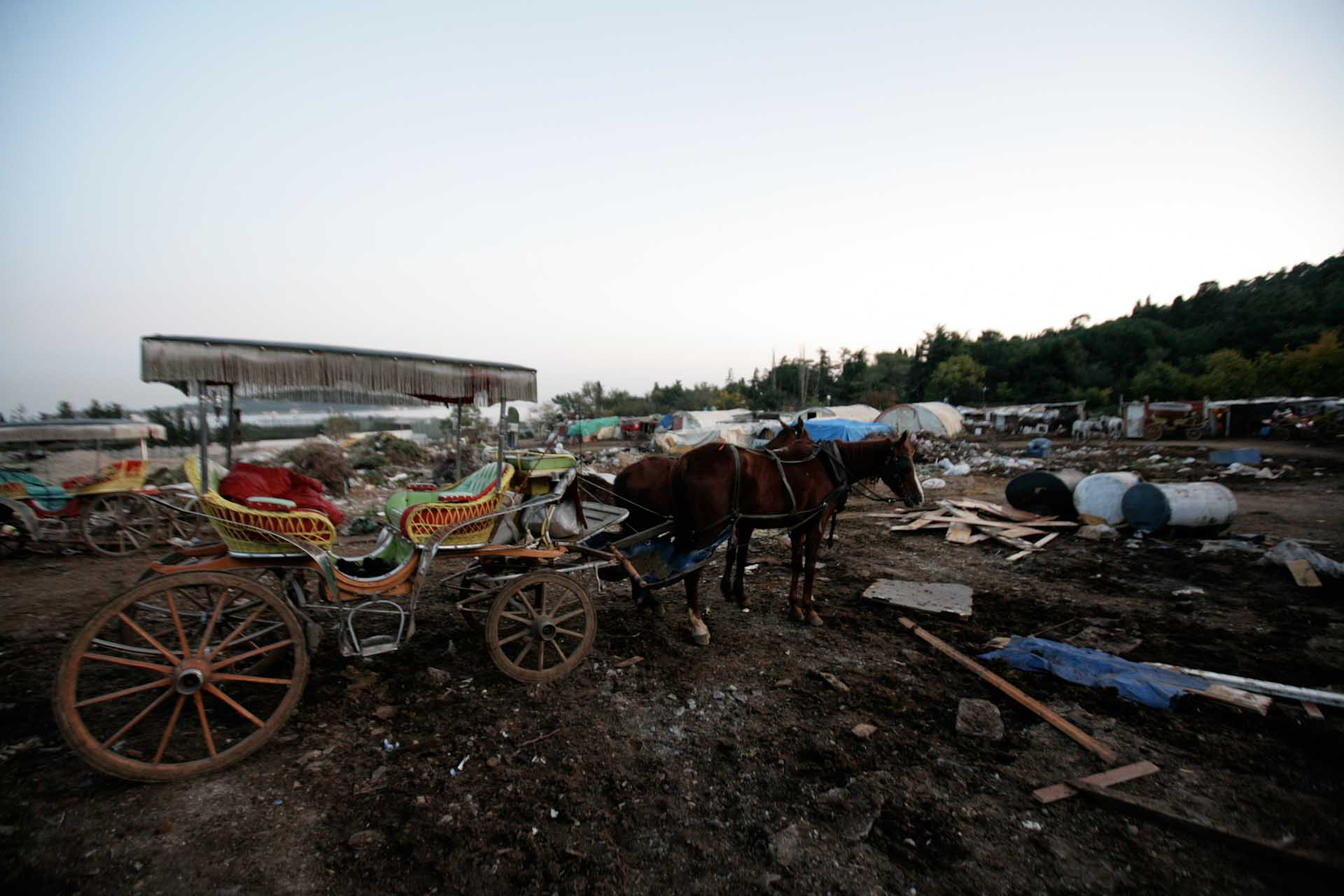 TUR, Tuerkey, Büyükada, 2009-11-10, Büyükada © Stefan Pangritz