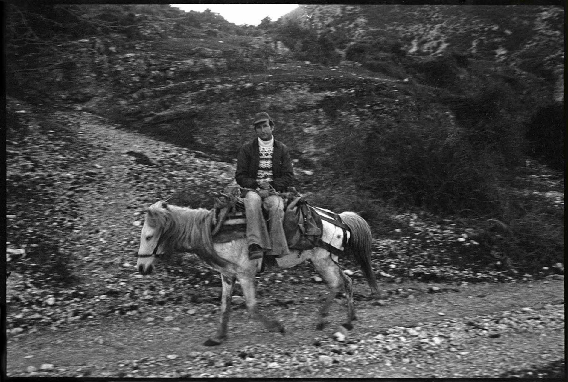 Für Bauern waren Esel und Maultiere damals noch ein übliches Fortbewegungmittel