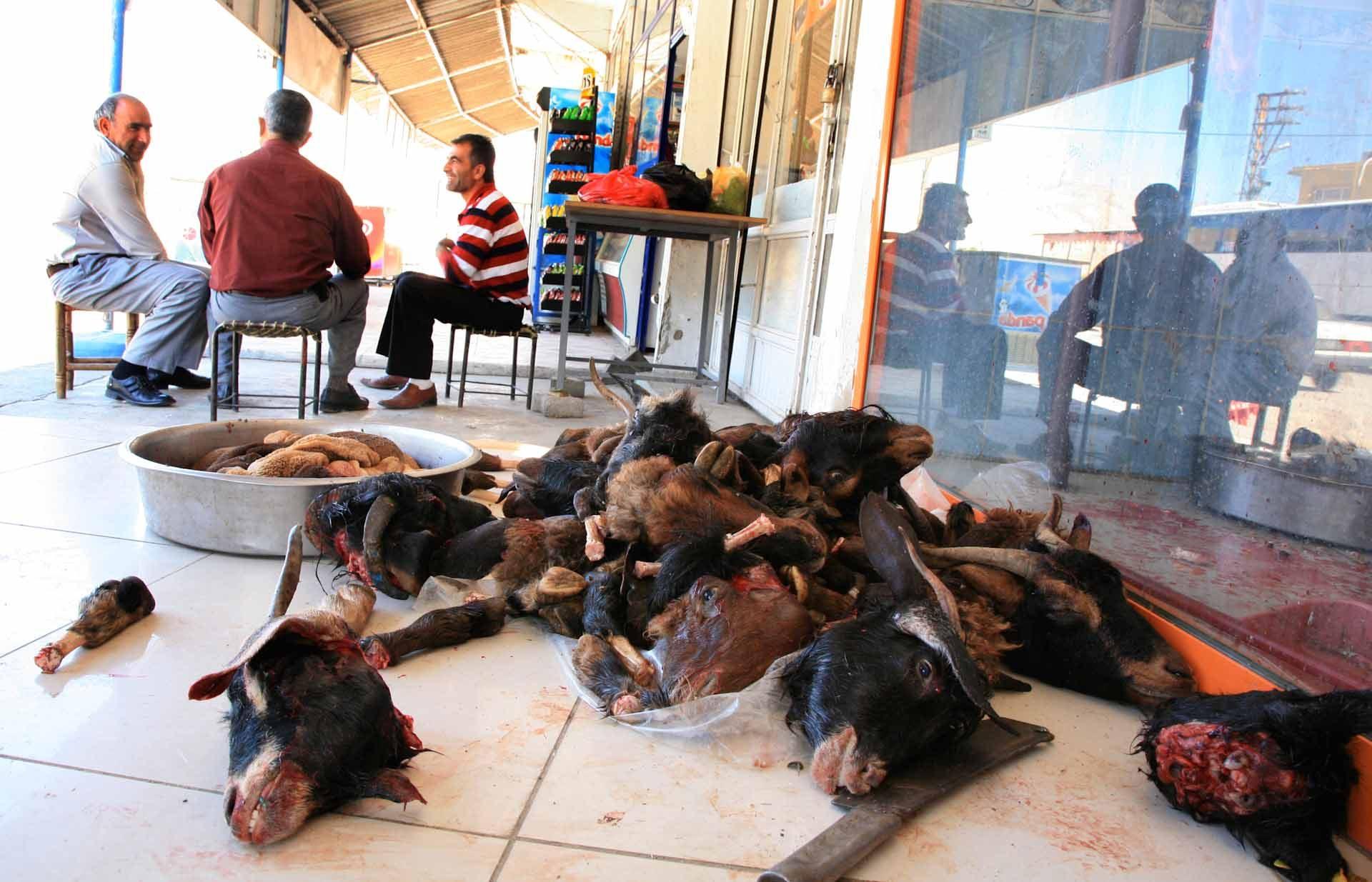 Heute hat Suleyman alleine 30 Tiere zerlegt und verkauft.
