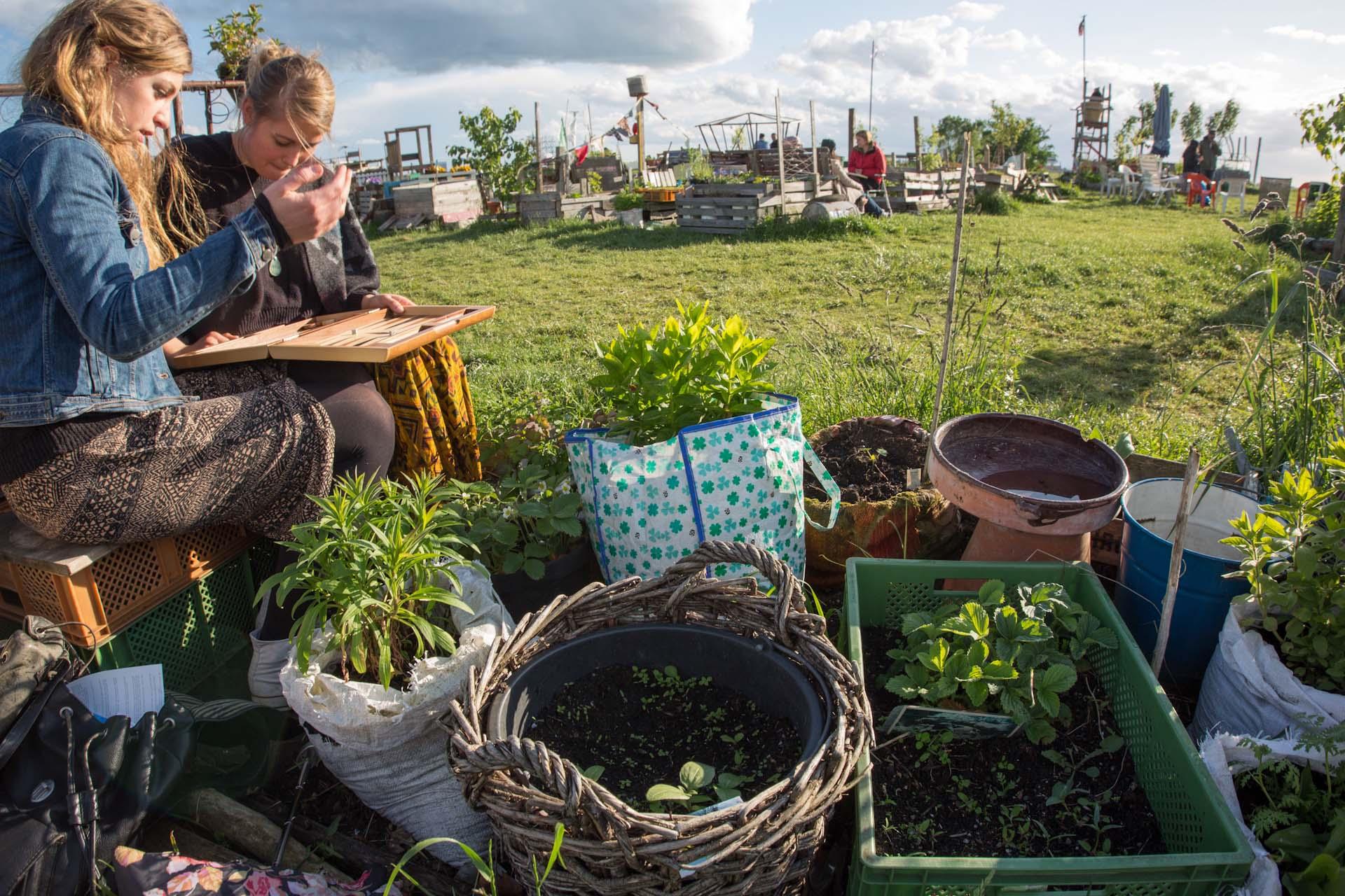 Gärtnern und Pflanzen ist wegen der möglichen Kontamination des Bodens nur in Hochbetten möglich.