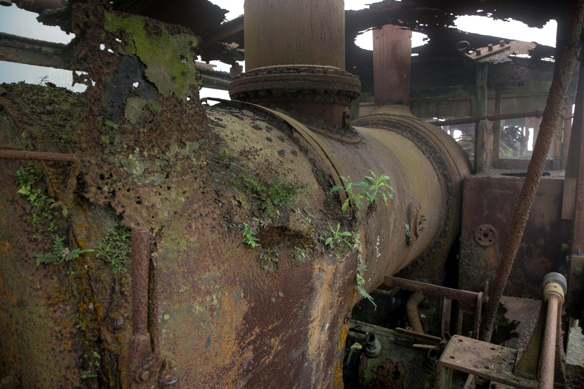 ...and old steam locomotives are rusting away on the grass.